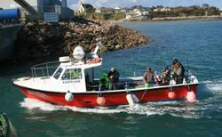 Saltee Island Boat Trips With Kilmore Quay Angling